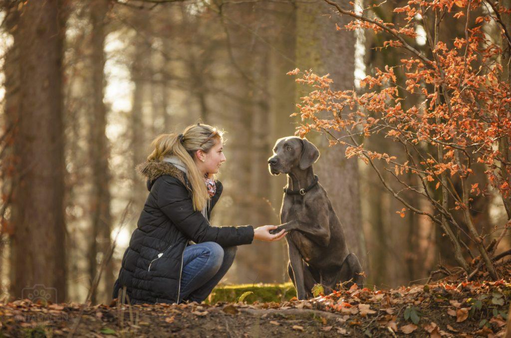 Shooting mit Mensch und Hund im Wald